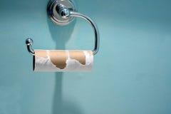 Rullo vuoto della carta igienica Immagine Stock