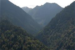 Rumänien bergsikt Royaltyfria Bilder