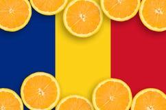 Rumänien flagga i citrusfruktskivahorisontalram arkivbild
