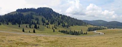 Rumänien naturliga Apuseni parkerar - Padis Royaltyfri Foto