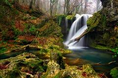 Rumänien parkerar den härliga landskapvattenfallet i skogen och naturliga Cheile naturliga Nerei Royaltyfri Bild