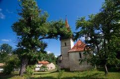 Rumänien - Pesteana omdanad kyrka Arkivbilder