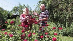 Rumänische ältere Bauer-Paare stock video