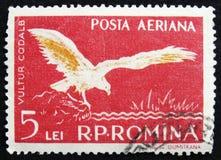 Rumänische Briefmarke zeigt Adler, circa 1956 Stockfotografie