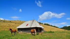 Rumänische Landschaft Lizenzfreie Stockbilder