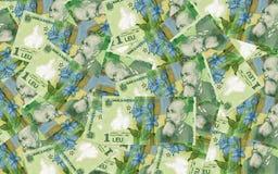 Rumänischer Geldhintergrund Stockbild