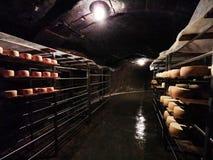 Rumänischer Käse nasal auf Metallregalen in der Grotte stockfotos