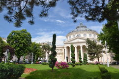 Rumänsk Athenaeum Fotografering för Bildbyråer
