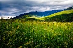 Rumänsk backe och by i sommartid, berglandskap av Transylvania i Rumänien arkivbilder