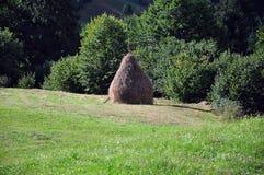Rumänsk höstack Arkivbild