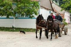 Rumänska Banat Royaltyfri Fotografi