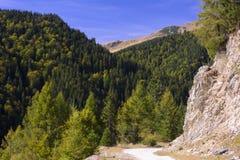 Rumänska Carpathians Arkivfoton