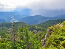 Rumänska dimmiga berg Arkivbild