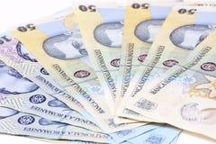 Rumänska pengar Arkivbilder