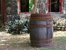 Rum Barrel and Tropical Ruins Stock Image