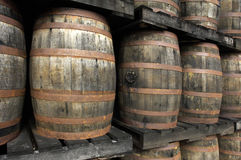 Rum barrels Stock Photography