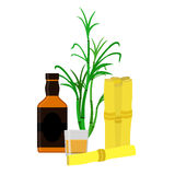 Rum bottle, sugar cane, glass, shot. Flat style. Organic drink. Royalty Free Stock Photography