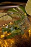 Rum e menta Immagini Stock Libere da Diritti