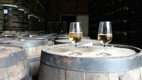 Rum Factory. Glasses of rum sit atop barrels in the store house royalty free stock photos