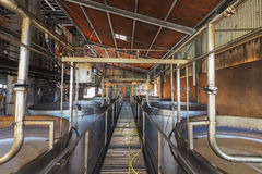 Rum plant interior view, with brewing tanks and pipes Stock Images