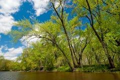 Rum river, spring-2 Stock Photos