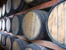 Rum stockpiling Stock Images