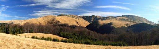Rumania, panorama de la montaña de Tarcu Imágenes de archivo libres de regalías