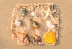 Rumflaschen-, -silber- und -goldmünzen, Seile, Kompass und alte Karte der Insel lizenzfreie stockbilder