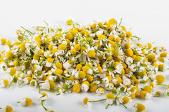 Rumianek herbata z miodem Fotografia Royalty Free