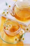 rumianek herbaty Zdjęcia Royalty Free
