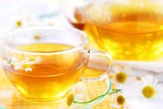 rumianek herbaty Zdjęcie Royalty Free