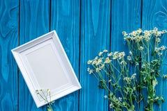 Rumianek i rama dla lato projekta na błękitnej drewnianej biurka tła odgórnego widoku przestrzeni dla teksta Obraz Stock