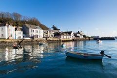 Rumienić się Cornwall zdjęcia stock