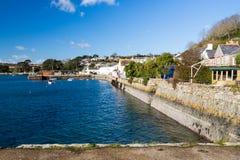 Rumienić się Cornwall obraz royalty free