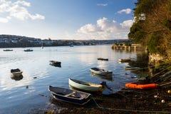 Rumienić się Cornwall zdjęcia royalty free