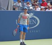 Wielkiego Szlema mistrza Andy Murray praktyki dla us open przy przy Billie Cajgowego królewiątka tenisa Krajowym centrum Zdjęcie Royalty Free
