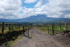ruminahui του Ισημερινού του 2008 Στοκ εικόνες με δικαίωμα ελεύθερης χρήσης