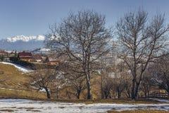 Rumänische ländliche Landschaft des idyllischen Winters Stockfotografie