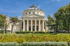 Rumänsk Athenaeum Arkivbilder