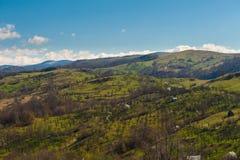 Rumänskt bygdlandskap med fruktträdgårdar i soluppgång Royaltyfria Foton