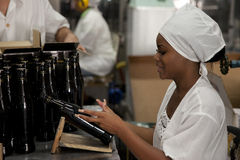 Rumowa fabryka w Hawańskim, Kuba Zdjęcia Royalty Free
