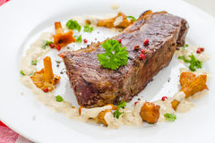 Rump steak with chanterelle, cream sauce Royalty Free Stock Photo