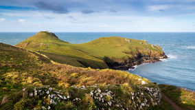 Rumps Point Cornwall Stock Image