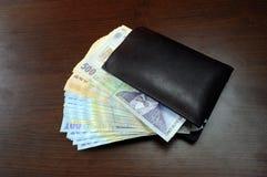 Rumuński pieniądze Obrazy Stock