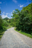 Rumuńska wsi droga Obrazy Royalty Free