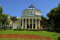 Rumuński Athenaeum Zdjęcie Royalty Free