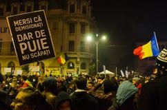 Rumuński protest 05/11/2015 Fotografia Stock