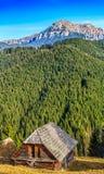 Rumunia bucegi góry widzieć od Moeciu wioski, Brasov Obrazy Stock