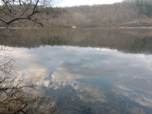 狗Run湖在3月下旬 库存照片