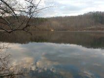 狗Run湖在3月下旬 免版税库存照片